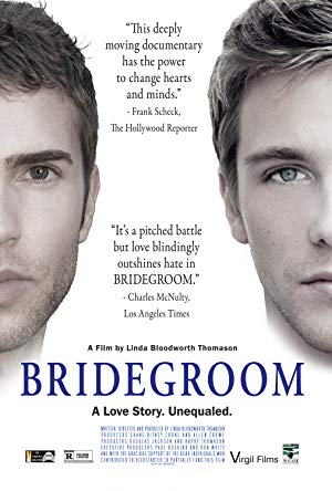 movie poster of Bridegroom