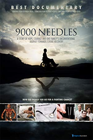 movie poster of 9000 Needles