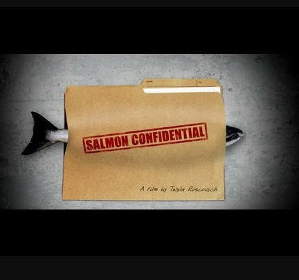 movie poster of Salmon Confidential