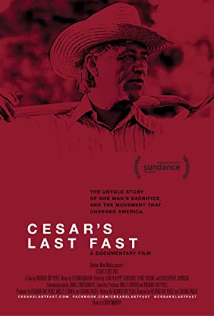 movie poster of Cesar's Last Fast
