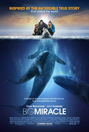 movie poster of Big Miracle