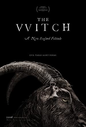 movie poster of The Witch