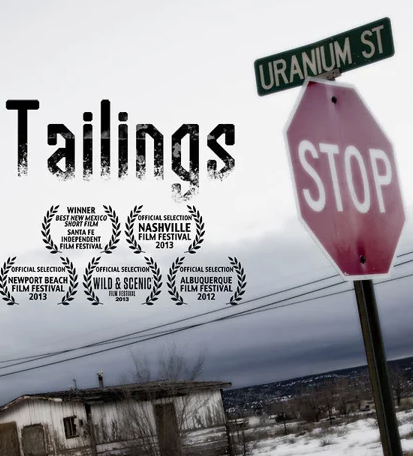 movie poster of Tailings