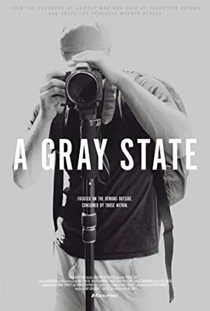 movie poster of A Gray State