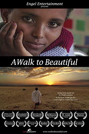 movie poster of A Walk to Beautiful
