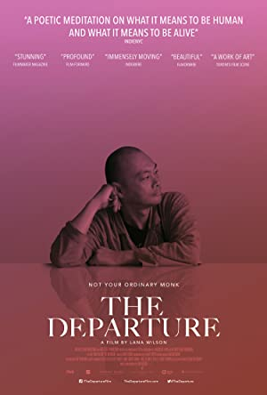 movie poster of The Departure
