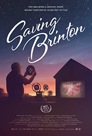 movie poster of Saving Brinton
