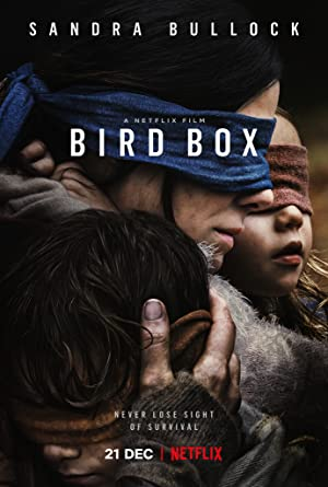 movie poster of Bird Box