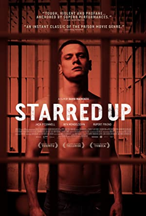 movie poster of Starred Up