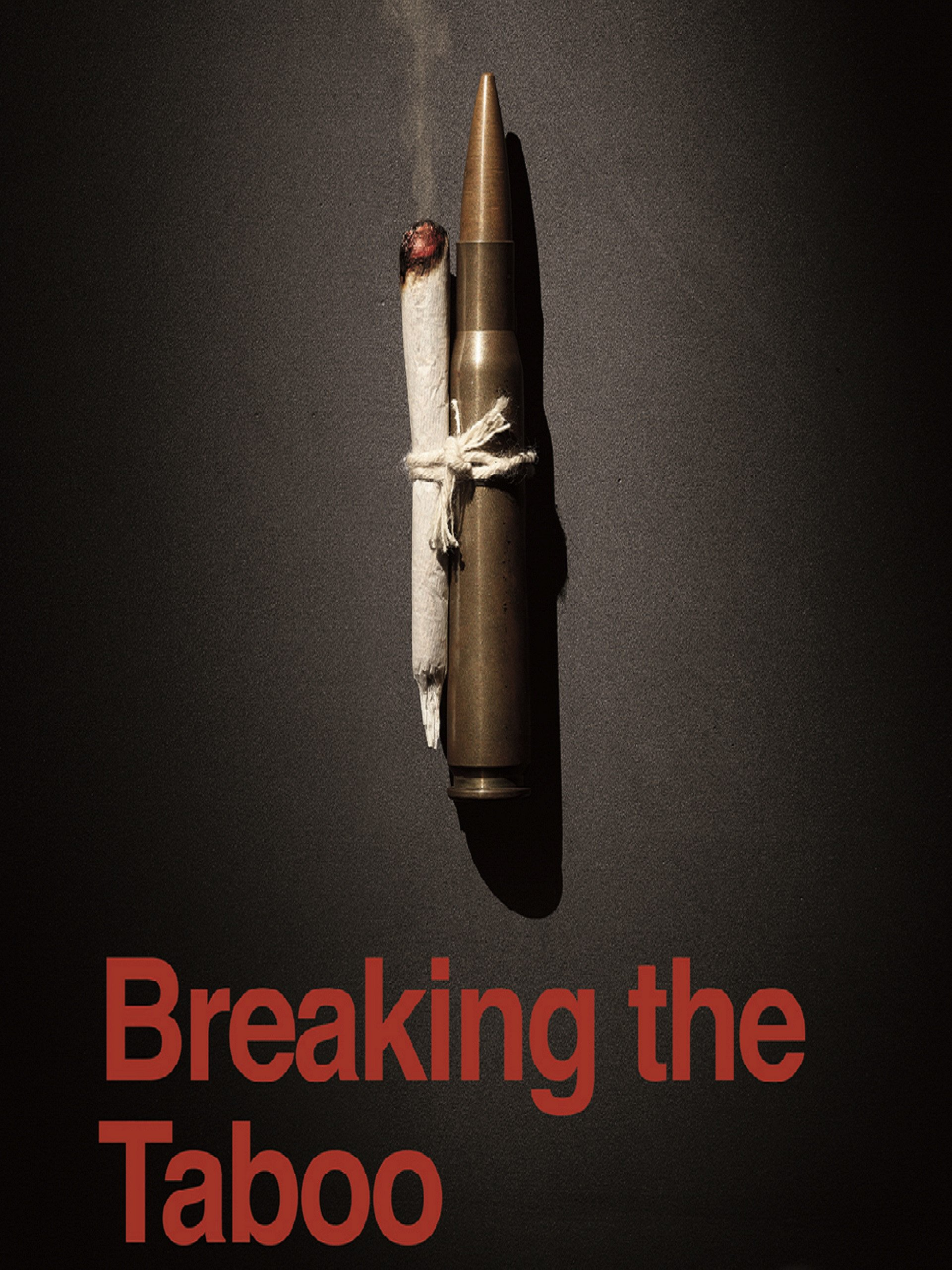 movie poster of Breaking the Taboo