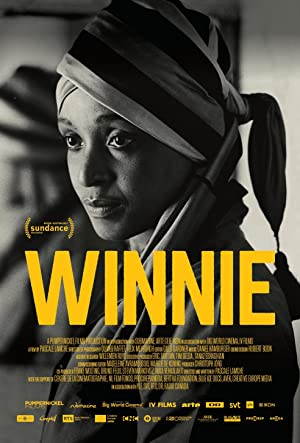 movie poster of Winnie